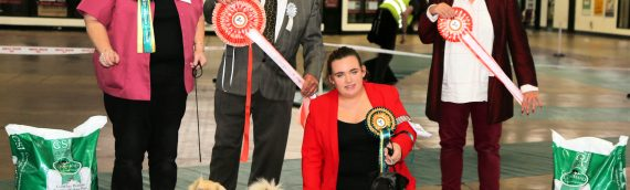 Tia wins Best Veteran in Show at Exeter